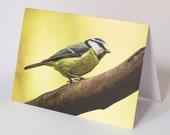Blue Tit photo greeting card