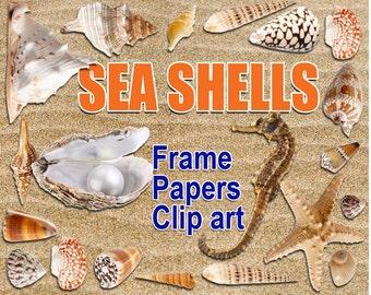 Digital Sea Shells Clipart, Frame, Papers, printable Digital Scrapbooking, Seaside Clipart, Marine Digital Collage, Instant Download