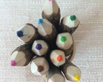 Bundle of 10 Handmade Branch Color Pencils