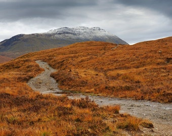 Moorland And Munro, original fine art photography, print, highland, landscape, nature, 8x12,  mountain, munro, windswept, scotland, yellow