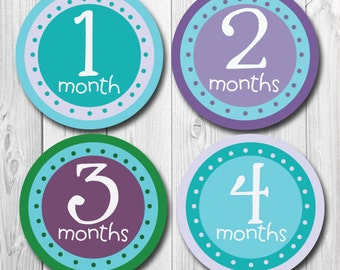 Baby Month Stickers, Purple & Teal, Monthly Baby Stickers, Baby Girl Stickers, Milestone Stickers for Baby, Month Stickers,  Purples