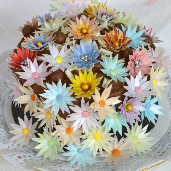 Edible Real Flowers For Cake Decorating : Edible Spring Daisy 3D Flowersx100 Pastel Garden Daisies ...
