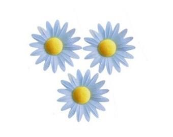Edible Flower /Blue Daisy