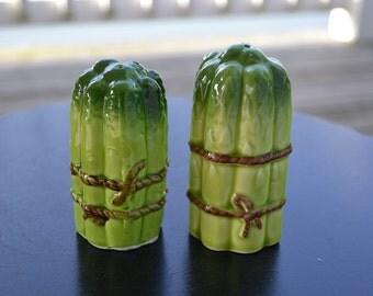Asparagus Salt and Pepper Shakers, Vegetable Kitchen Decor