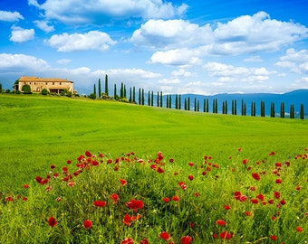 Italy - View in Tuscany, with cottage and poppy field - SKU 0111
