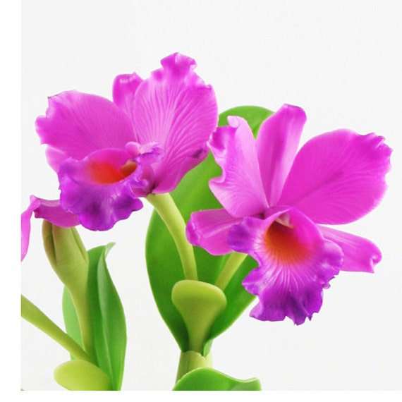 Luxury cattleya orchid artificial flowers thai clay