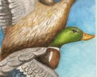 ACEO Original Watercolor   In Flight
