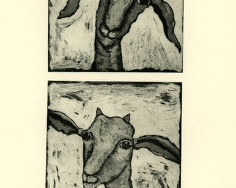 Etching, Little Goats, goat, portraits,black and white, farm kitchen, country side, home interior, country kitchen, farm animals,