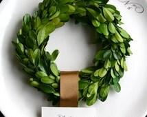 "Preserved Boxwood Wreath, 6"", Small Boxwood Wreath, Boxwood Wreath"