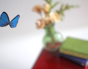 Miniature Floating Butterfly