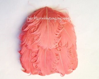 Feather Pad - 1 Coral Pink Nagorie Curled Goose Feather Pad