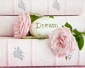"""Pink Roses Photography, Shabby Chic Roses Decor, Dreamy Soft Pink Roses, Cottage Pink Books, Romantic Pink Roses """"Dream"""" Baby Girl Nursery"""
