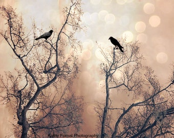 Nature Photography, Surreal Trees Birds Ravens Crows, Gothic Fantasy Nature Trees, Spooky Haunting Eerie Ethereal Nature Ravens Photography