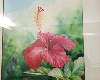 Hawaiian Hibiscus Art Framed Original Fine Art Tropical Hawaii Red Flower, Black Frame Fine Art Watercolor Painting by artist Christie Marie