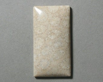 AGATIZED FOSSIL CORAL large cabochon rectangle 29X57mm designer cab