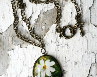 Dreamy Flower Photo Jewelry Necklace, Floral Pendant Necklace, Tickseed White Wearable Art