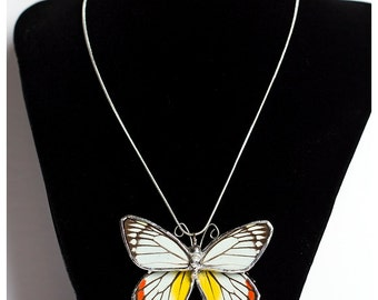 Real Butterfly Wing Necklace. Whole Butterfly