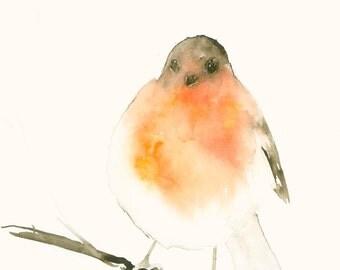 Robin Fine Art Print from Original Watercolor