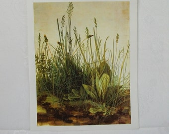 Book Plate Page Paper Ephemera, Large Ready to Frame Print Page, Flora Plants Botanical, 001