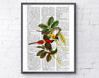 Summer Sale Hummingbirds n03 Wall art Print on Dictionary page Wall hanging illustration giclee poster print gift her ANI114