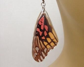 Aretes de Mariposa Verdadera.  Joyería de Resina con Alas de Mariposa.  Reversibles.  Acero Inoxidable Anti Alérgicos.