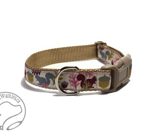 "Nuts for Squirrels on Tan Fall Dog Collar - 1"" (25mm) Wide - Choice of size and style - Martingale or Side Release Buckle // Sand // Khaki"