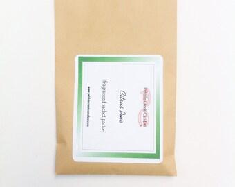 Sachet Citrus Pine Aromatherapy Scented Stocking Stuffer for Men Christmas Gift for Her Winter Wedding Favor Rustic Bridal Shower Prize