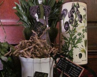Hannah's Herbal Brew Gift teacup and teabags SET: Organic, herbs, flowers, tea, herbal tea, sample tea, edible, witchery, apothecary, ritual
