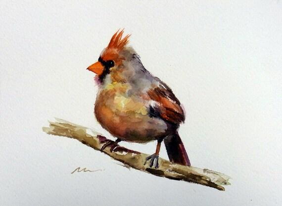Bird Painting Female Cardinal Original Watercolor Animal
