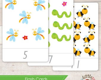 Little Bug Number Flash Cards AUTOMATIC DOWNLOAD