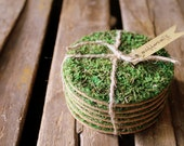 Mossy Coasters 6ct.