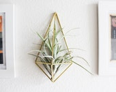 Himmeli fig. 3 - The Wall Sconce | Brass Air Plant Holder, Modern Minimalist Geometric Ornament