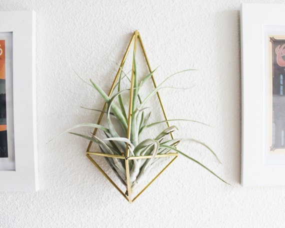 The original wall sconce brass air plant holder modern for Geometric air plant holder