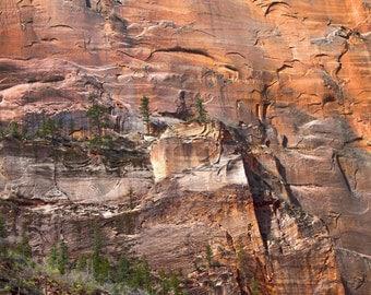 Zion Photography, Utah Nature Photo Art, Red Rock Utah Cliff and Green Trees, Utah Virgin River, Zion National Park, Utah Nature Photo Art