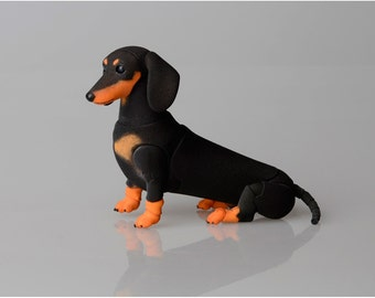 BJD dog: dachshund.