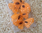 ORANGE Butterflies, Magnets, craft supply