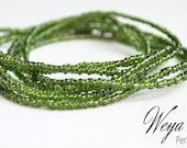 Baya Waly - beauty of Jade