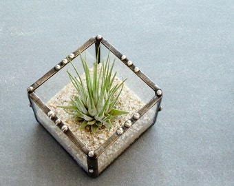 Small Air Plant Holder, Desk Accessory, Planter, Small Glass Cube, Gift for Her, Under 25., Mini Planter