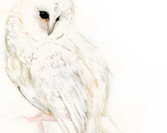 Owl Art Snow Owl Fine Art Print