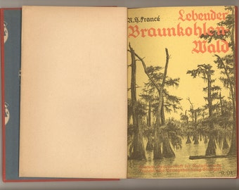 Swamps - The Living Lignite Forest - Lebender Braunkohlenwald 1931 Vintage German Children's Natural History Book Deutsche Black Letter