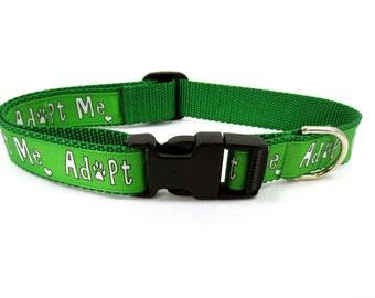 Large Green Adopt Me Dog Collar