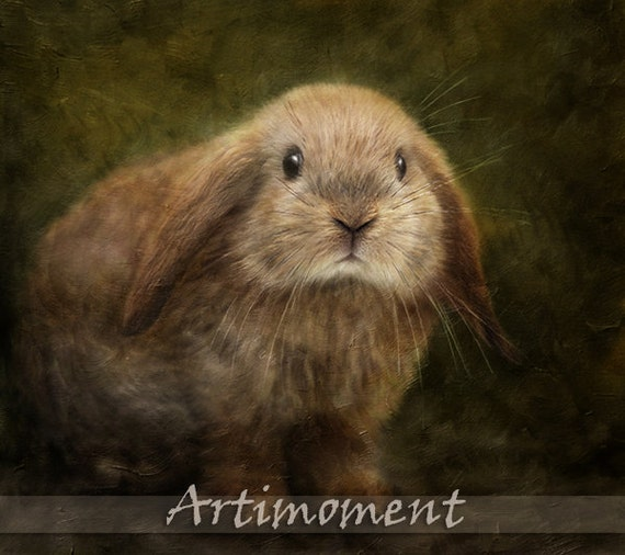 Custom Portrait, Custom Pet Portrait, Personalized Rabbit Portrait, Bunny Portrait, Custom Digital Painting, Drawing Painting From a Photo