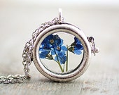 ON SALE Small window locket necklace with real dried Forget me not. Antique silver colored chain.