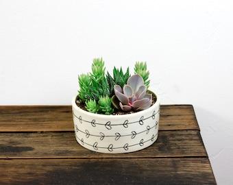 Succulent Planter Vine Heart Pottery Echeveria/ Haworthia/ Sedum