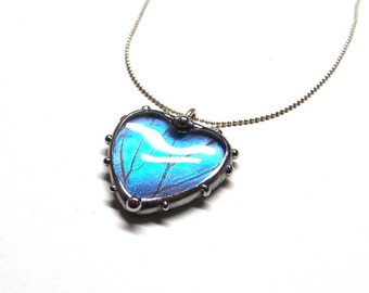 Real Blue Morpho Butterfly Heart  Necklace - Beautiful Light Blue Butterfly - Medium Size Heart