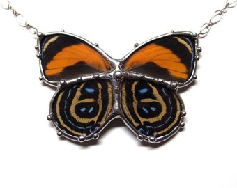 Butterfly in Glass - Real Butterfly Necklace - Natural Jewelry