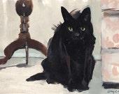 Animal Print Black Cat - Black Cat by David Lloyd