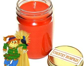 Country Bumpkin Mason Jar Candle Spicy Fruit Fall Scent 12 Oz Handmade