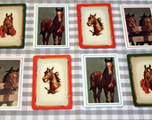 Fun Lot of Eight Horse Playing Cards