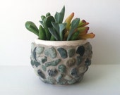 RESERVED FOR JOULES Riverbed Mosaic Stone Pot